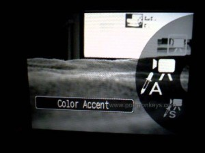 canon sd880is video color accent mode