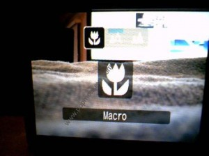 Canon SD880IS Video Macro Mode